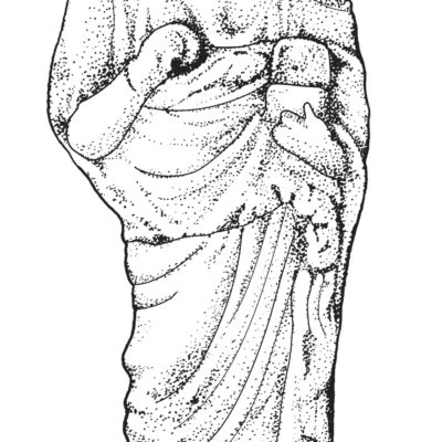 Roman household statuette of Juno (replica); Ink and Adobe Illustrator, 2017.