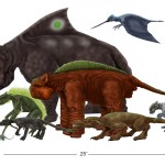 Size comparison- Tai species