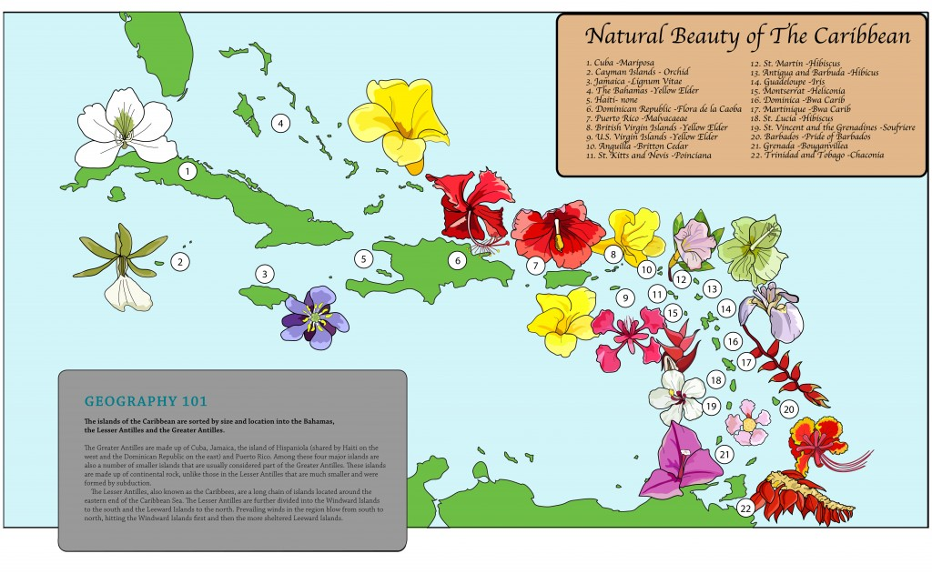 Natural Beauty of the Caribbean; Illustrator. 2009